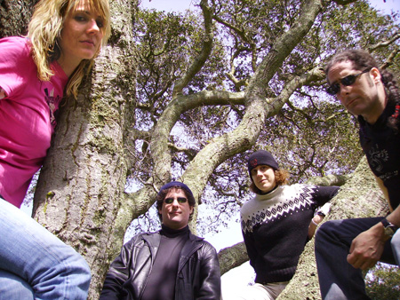 Mobius Donut band shot. Band is sitting in a tree with Cindy Lou on the left, Kerry in the center next to Andrea, and Kevin on the right